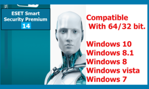 ESET internet Security 14(32bit/64bit) Full Version 2021