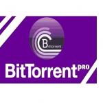 BitTorrentPRO 7.10.4.44633 Multilingual (Portable) Latest