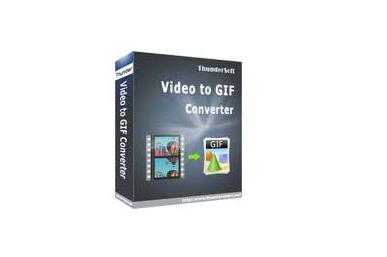 ThunderSoft GIF Converter 2.9.0 full version