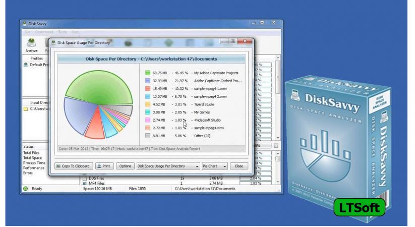 Disk Savvy Ultimate 2020 free download v13.1 for Windows 10, 8.1, 7