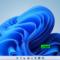 Windows 11 Pro Lite 21996.1 Preactivated Latest